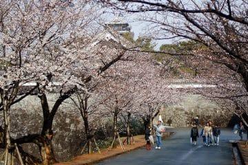 ที่เที่ยวในญี่ปุ่น สถานที่ท่องเที่ยวในญี่ปุ่นที่ทุกคนนั้นต้องไป